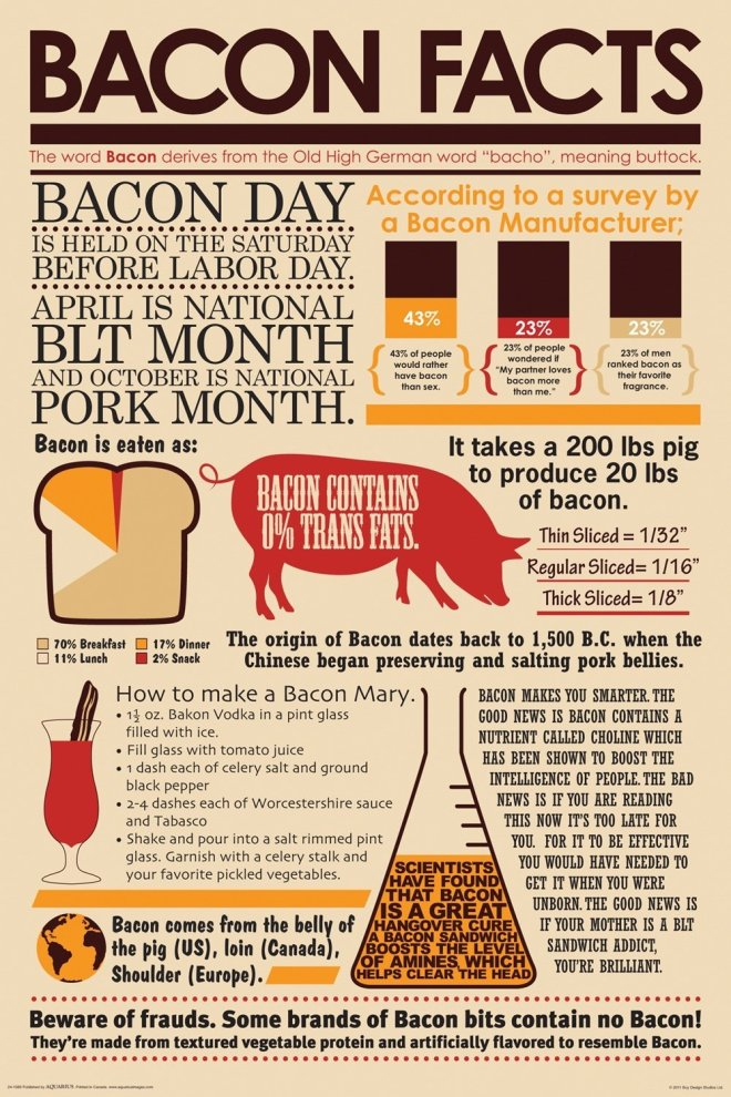 Bacon Facts Infographic